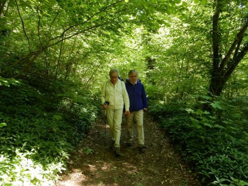Wandeling Sint Geertruid 4 mei 2018