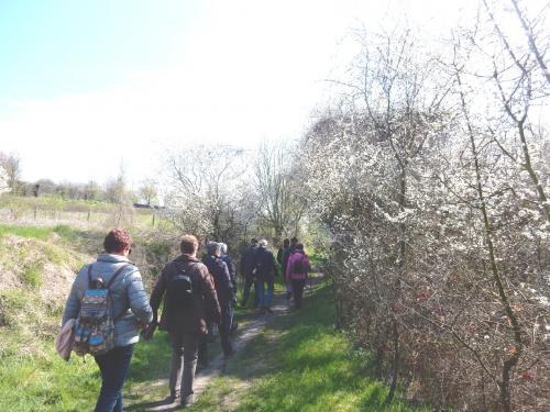 Wandeling Walem-Valkenburg 5 april 2019