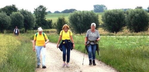 Wandeling 2 juli Wijnandsrade