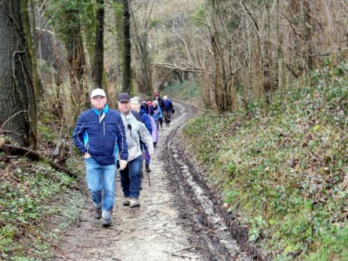 Wandeling Wylre-Schin op Geul februari 2018