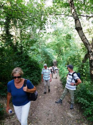 Wandeling 2 augustus rondom Euverem