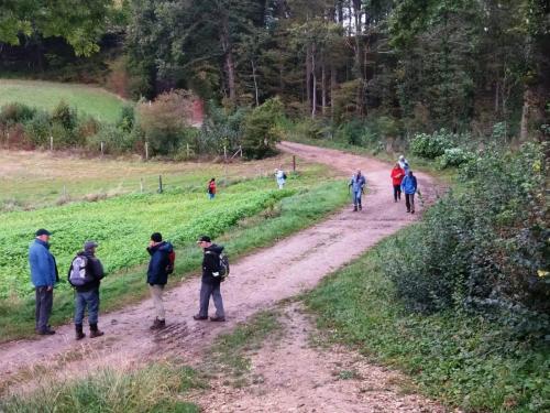 Wandeling 2 oktober 2020 Eyserbos